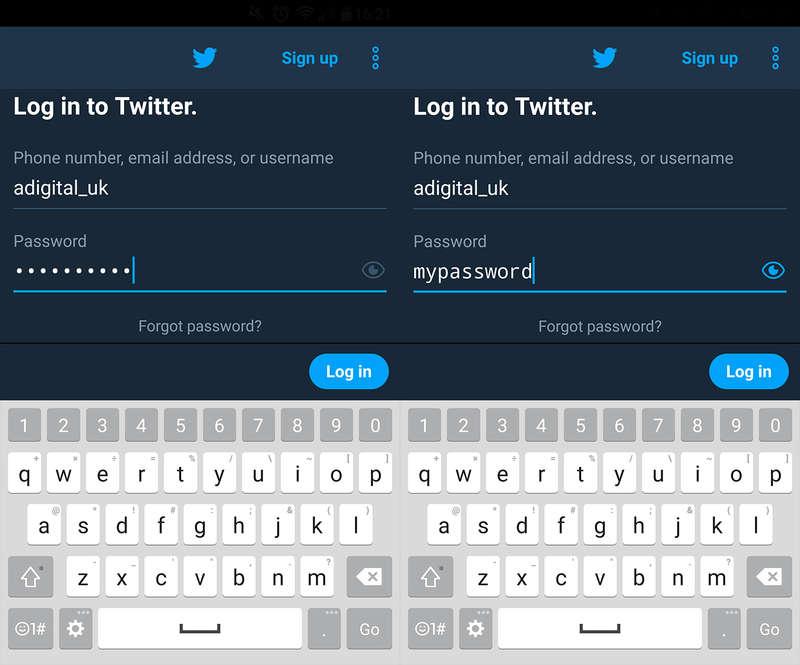 Password Toggle