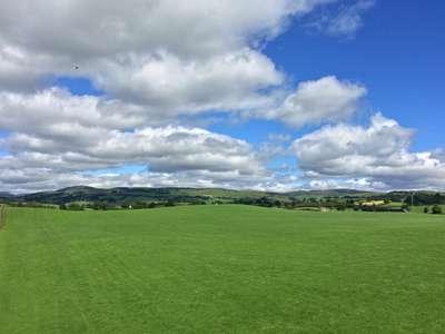 Meadowbank Looking North