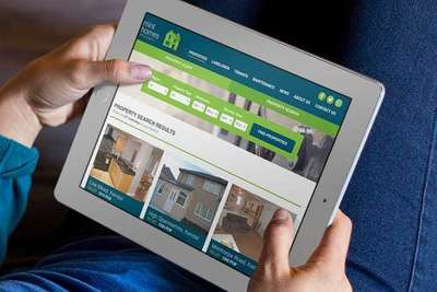 Mint Home Search Results